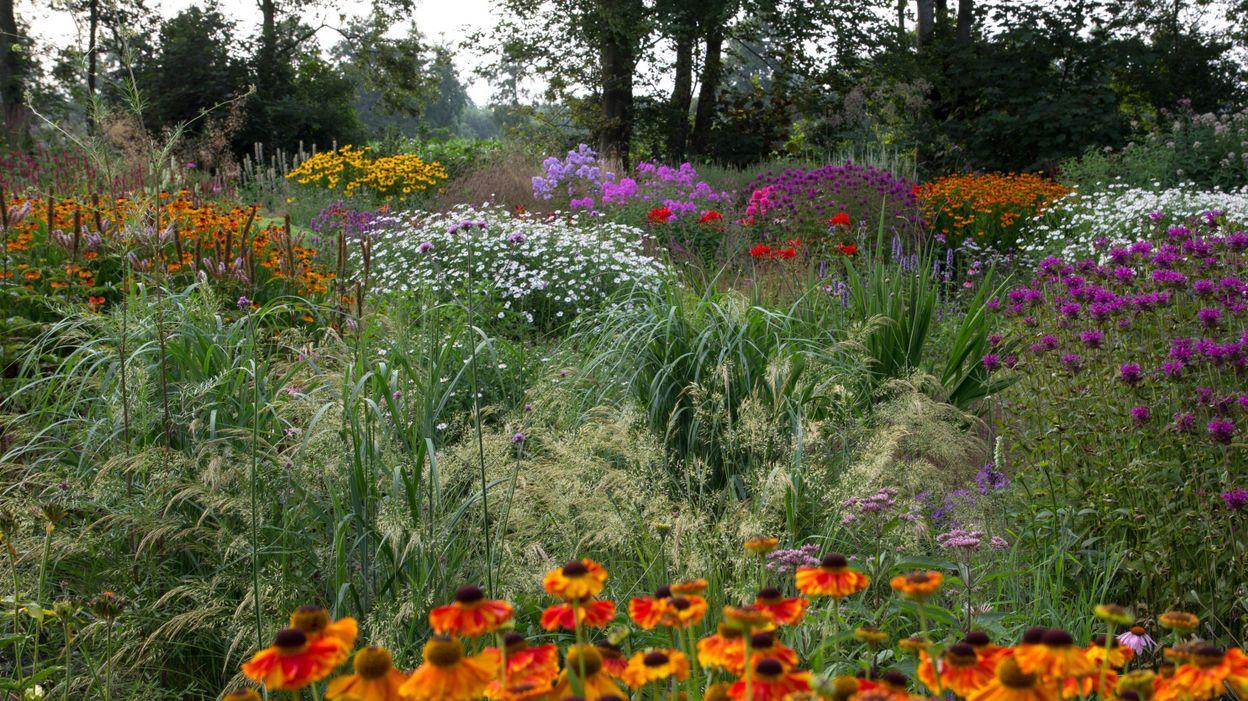 a d233couvrir ce dimanche dans votre 233mission de jardinage