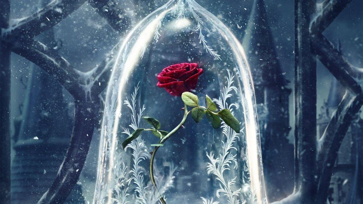 la rose enchant e sur la premi re affiche de la belle et la b te. Black Bedroom Furniture Sets. Home Design Ideas