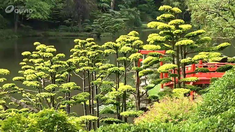 jardins et loisirs le plus grand jardin japonais en